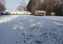 Hundeplatz Winter 2020/2021