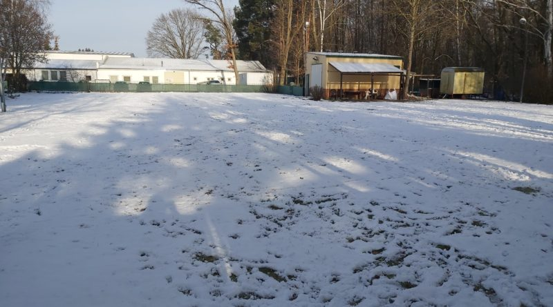 Hundeplatz Winter 2020/2021